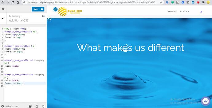 2020-12-31 17_10_53-Customize_ Expat Gold Digital – Integrated Digital Marketing