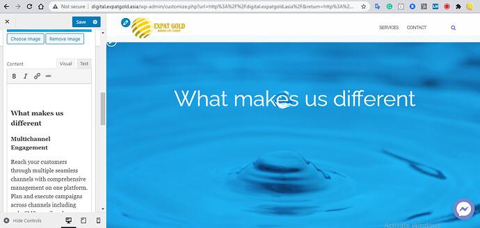 2020-12-31 17_08_47-Customize_ Expat Gold Digital – Integrated Digital Marketing