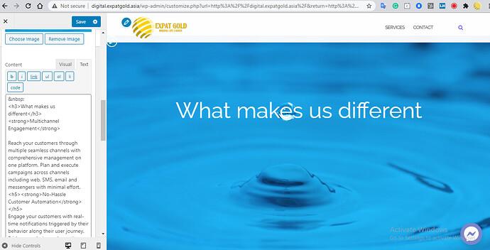 2020-12-31 17_09_33-Customize_ Expat Gold Digital – Integrated Digital Marketing